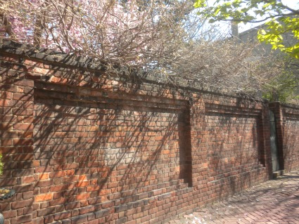 Garden Wall at 217 North Royal