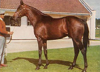 Mill Reef at Rokeby Farms